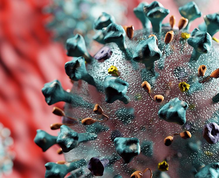 Koronavirüs Nedir? Belirtileri Nelerdir?