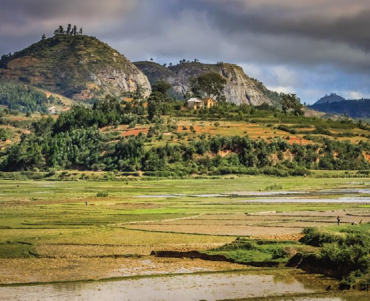 Bir Ada Ülkesi Madagaskar