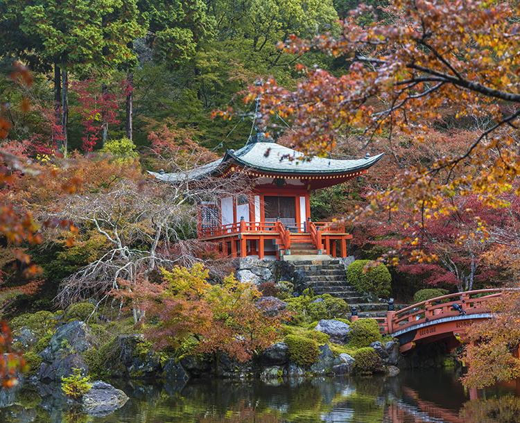 Japonya Kültürünü Keşfedelim