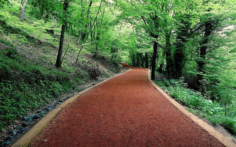 İstanbul'un Gizli Köşeleri - Belgrad Ormanı