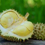 En Tuhaf Tropikal Meyveler