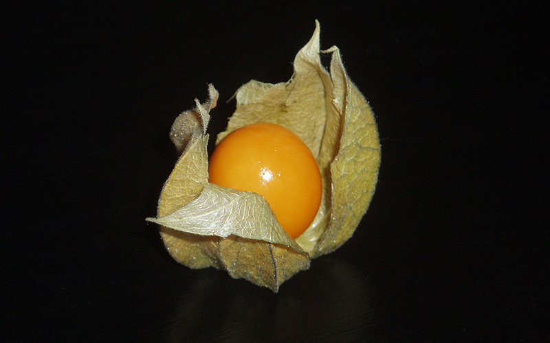 En Tuhaf Tropikal Meyveler - Güveyfeneri